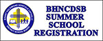 Summer School Survey Icon